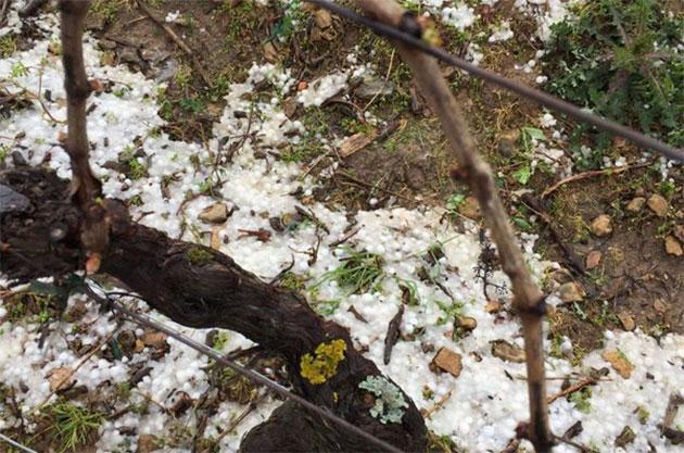 Hailstorm-in-Mâconnais-Frederic-Billet
