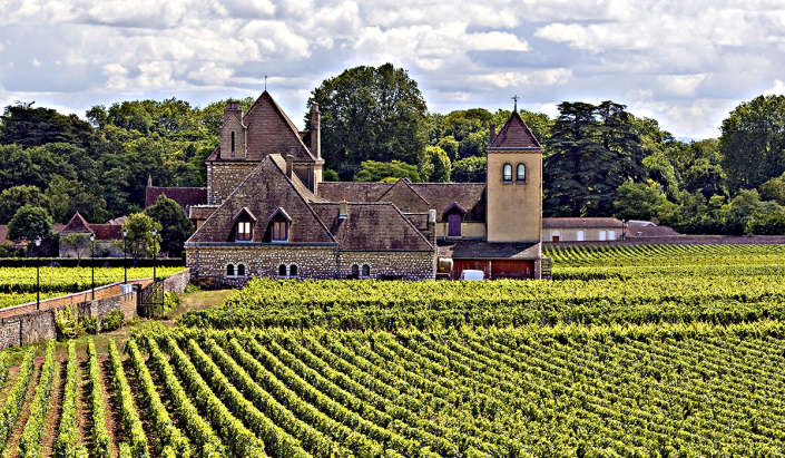 french-winery